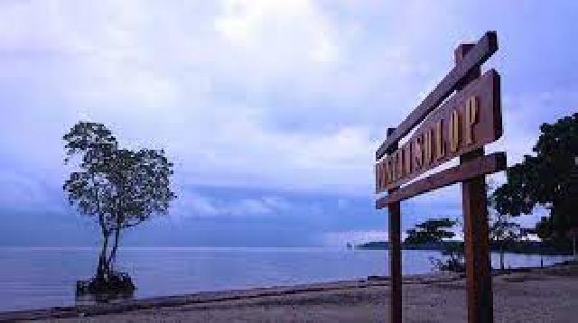 Kenali Keindahan Alam Solop Inhil, Mulai Hutan Mangrove Flora dan Fauna Hingga Pasir Sersah
